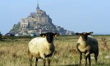 Le bon site pour des vacances normandie réussies