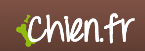 Logo golden retriever chien.fr