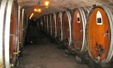 Du vin bien conservé à la maison : caveavin.site